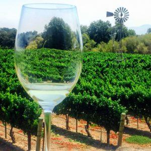 santa ynez valley lincourt vineyards