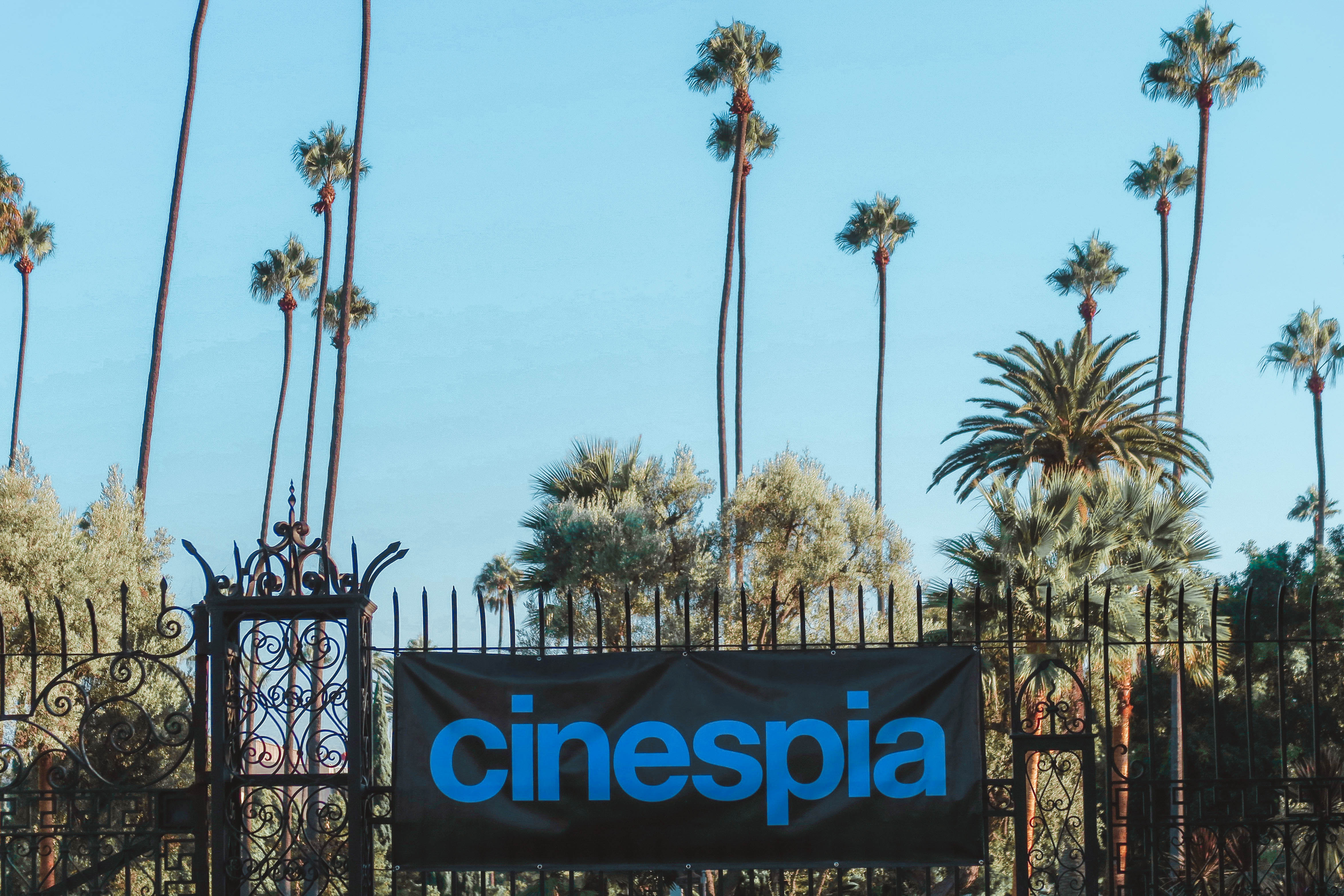 fun activities in Los Angeles: Cinespia at Hollywood Forever Cemetery