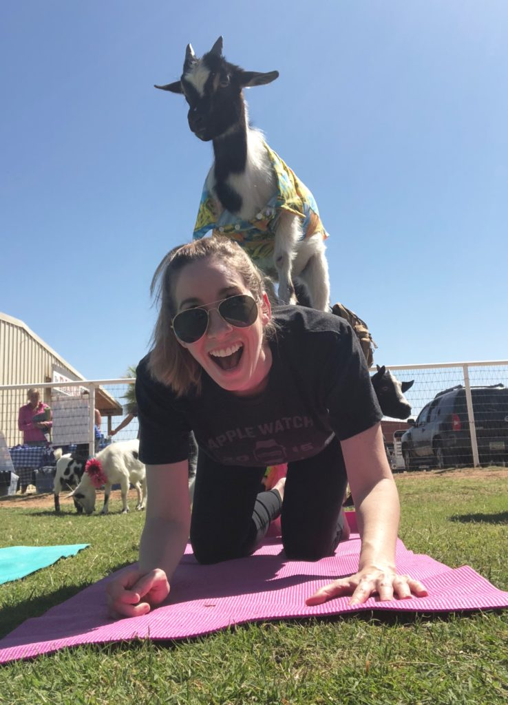goat yoga arizona